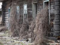 Фота: Чарнобыль. 30 гадоў пасля катастрофы
